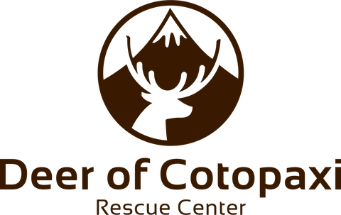 deer of cotopaxi rescue center