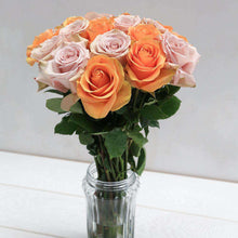 Load image into Gallery viewer, Sherbet Fresh Rose Bouquet in Vase - Rosaholics