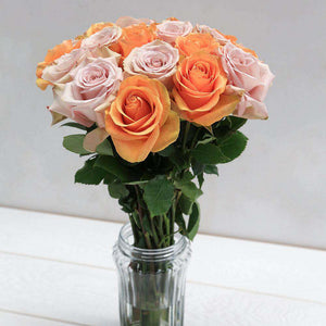 Sherbet Fresh Rose Bouquet in Vase - Rosaholics