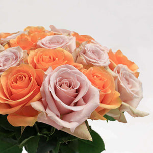Sherbet Fresh Rose Bouquet Close - Rosaholics
