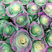 Load image into Gallery viewer, Aquamarine Rose Bouquet 5 - Rosaholics
