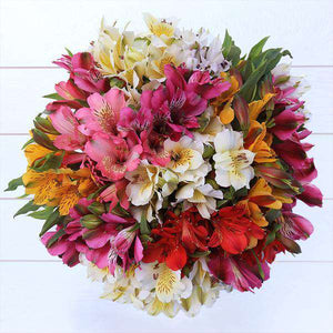 Alsotromeria Flower Bouquet