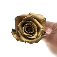 Load image into Gallery viewer, Golden Frost Rose Bouquet - Rosaholics
