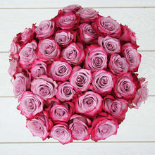 Purple Love Rose Bouquet - Rosaholics