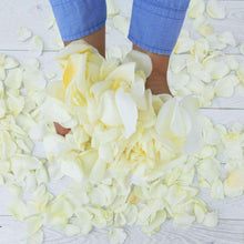 Load image into Gallery viewer, White Rose Petals - Rosaholics