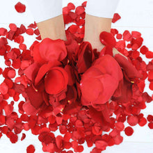 Load image into Gallery viewer, Red Rose Petals - Rosaholics