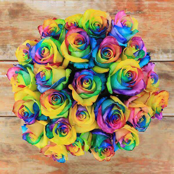 Rainbow (exclusive) Rose Bouquet - Rosaholics