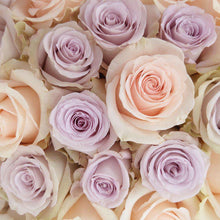 Load image into Gallery viewer, Cielito Lindo Fresh Rose Bouquet close - Rosaholics
