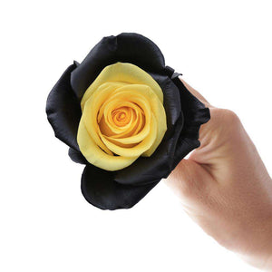 Bee Rose Bouquet - Rosaholics