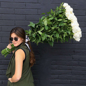 Extra-long roses up to 40 inches - Rosaholics