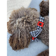 Toy poodle in Xolotl fashion houndstooth dog collar bow tie accessories - puccissime pet couture