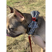 French bulldog in Xolotl fashion houndstooth dog bow tie - puccissime pet couture