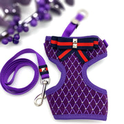 Royal purple dog harness and leash set