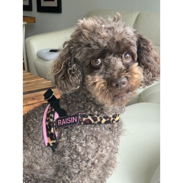 Personalized pink leopard one-click harness