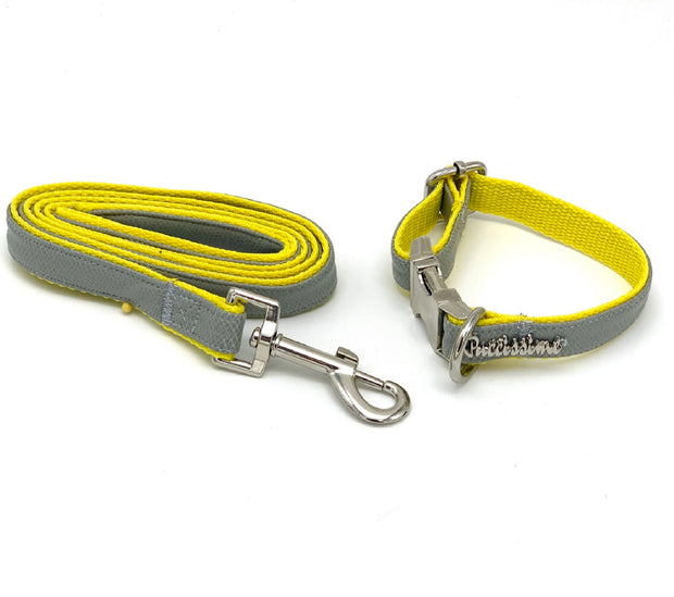 gray yellow leather dog collar & leash - Puccissime Pet Coututre