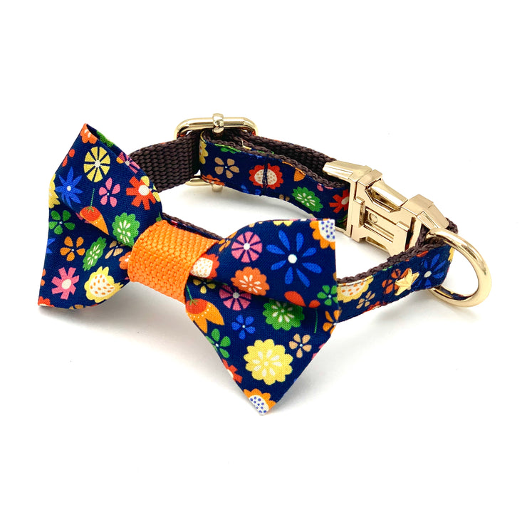 Floral colourful summer yellow, orange, blue dog collar and bow tie set with gold metal buckle hardware