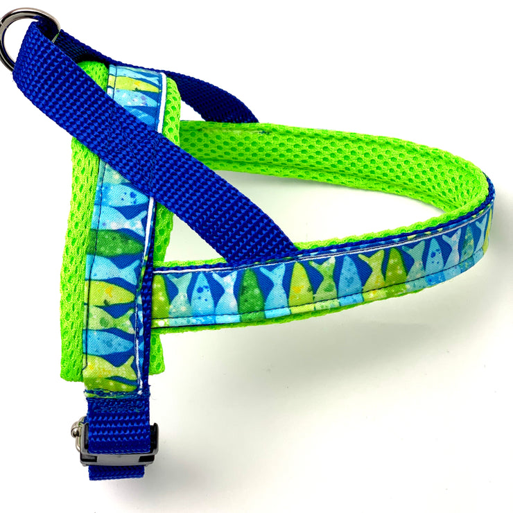 Neon blue and green ocean fish designer no pull easy fit dog norwegian harness