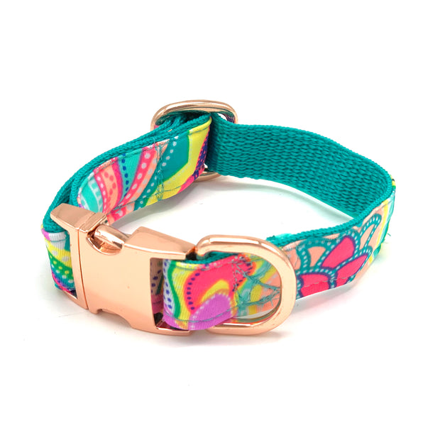 Shiny turquoise dog collar- dropship