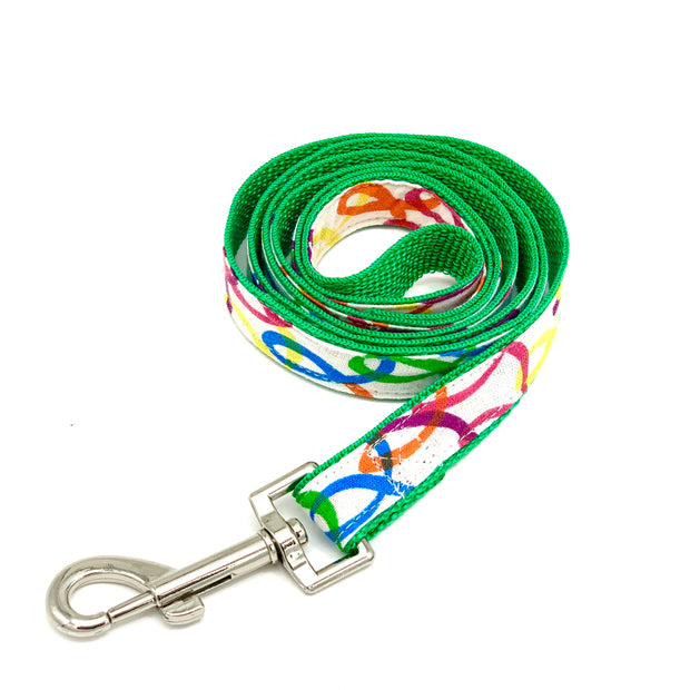 Rainbow green dog leash