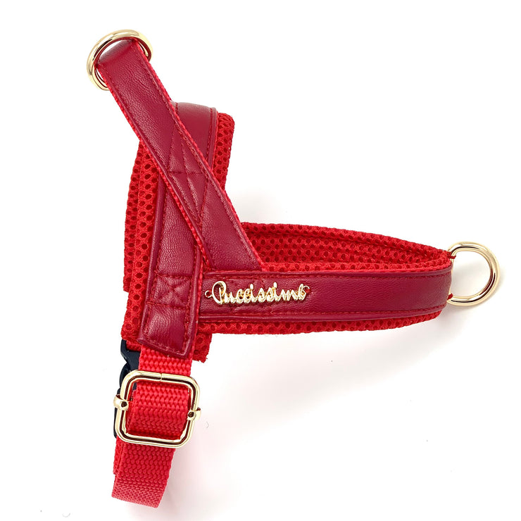 red leather dog Norwegian harness - Red leather harness - Red and gold dog harness