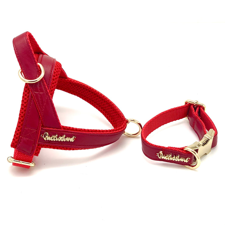 red leather dog Norwegian harness - Red leather harness and collar - Red and gold dog harness