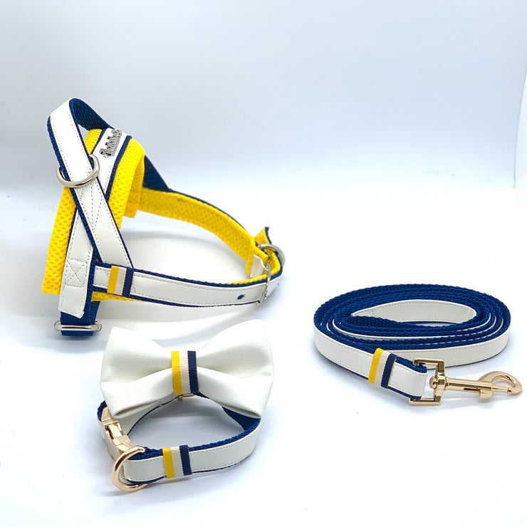 sunrise one-click harness- Norwegian Dog harness, leash and collar matching set -  Yellow white leather navy harness easy wear no pull no choke -Puccissime Pet Couture