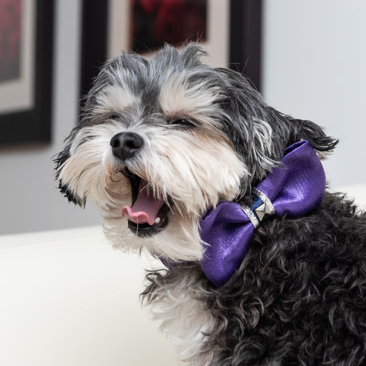 Purple satin leopard dog bow tie