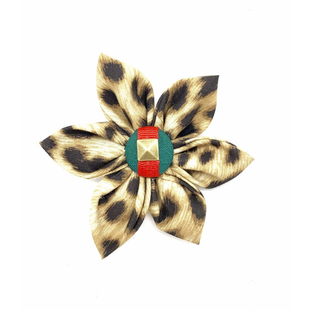 anubis fashion Gucci style leopard green red stripe dog collar flower - Puccissime Pet Couture