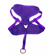 Royal purple harness and leash set