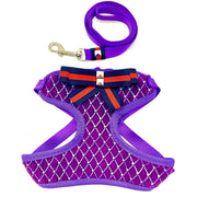 Royal purple chest harness and leash set with Gucci style ribbon - puccissime pet couture