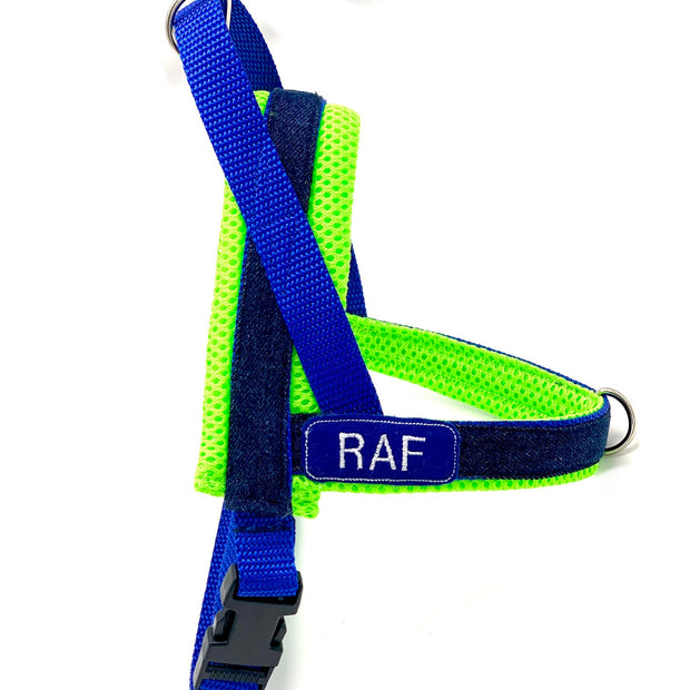 Personalized no pull no choke dog harness - blue and neon denim- Customized embroidery ID tag - Norwegian easy wear harness