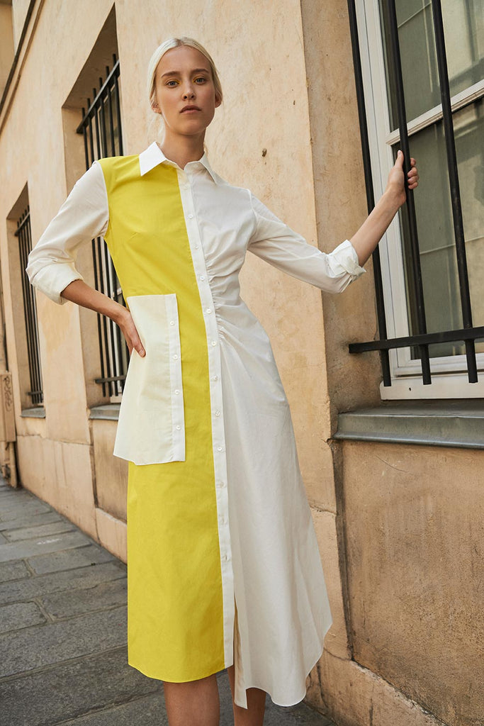 Laura Dress With Placket in Yellow