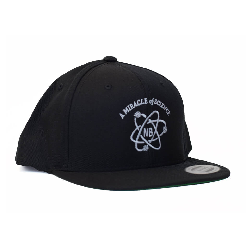 Nickel Brook Atom Snapback Hats