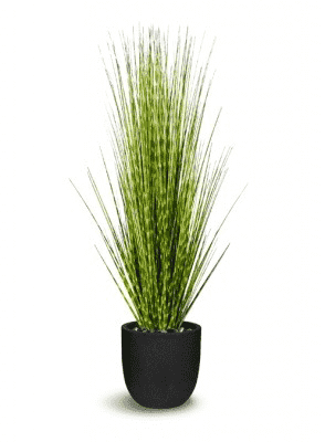 ARTIFICIAL POTTED GRASS 16 x 16 x 48-furniture stores regina-Hunters Furniture