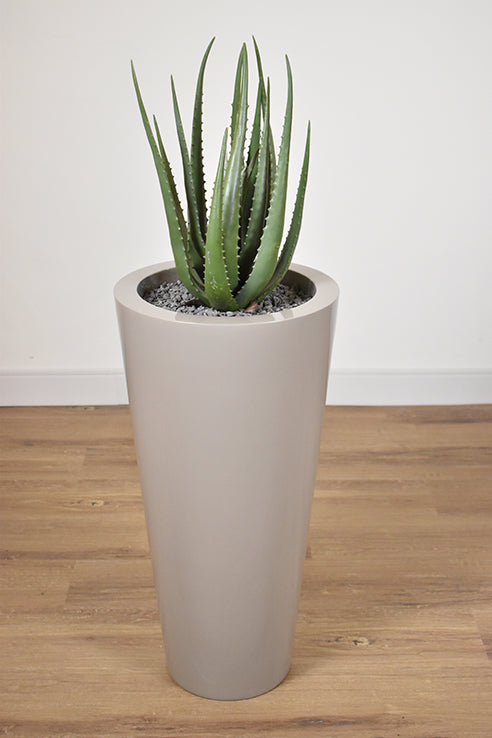 "Off White Poly Resin - 36"" Planter-furniture stores regina-Hunters Furniture"