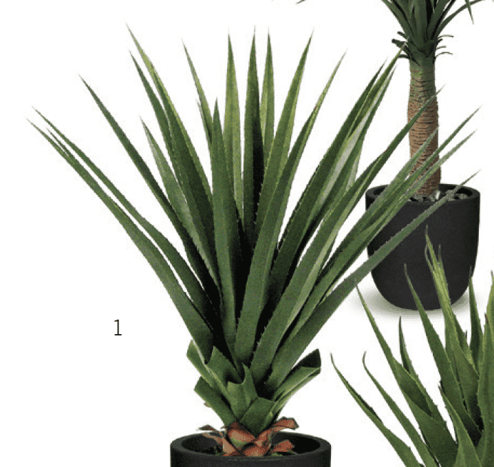 ARTIFICIAL GREEN DRACAENA(Potted) 28 x 32 x 32-furniture stores regina-Hunters Furniture