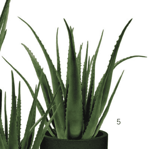ARTIFICIAL ALOE WITH POT(Potted) 30 x 20 x 20-furniture stores regina-Hunters Furniture