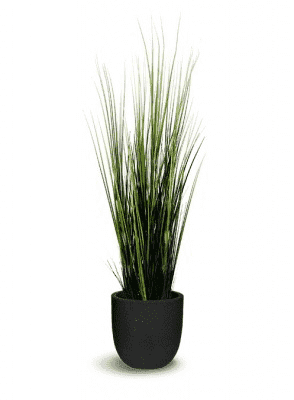 ARTIFICIAL WILD GRASS 12 x 12 x 47-furniture stores regina-Hunters Furniture
