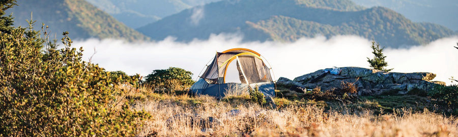 5 Reasons Camping is Good for Your Health