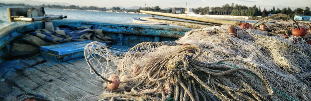 Ghost Fishing: Marine Life's Biggest Threat