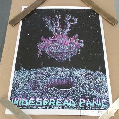 Widespread Panic North Charleston 2014 Emek Screenprint Poster xx/100 S/N'd