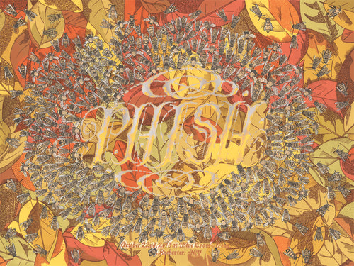 """Phish – Rochester, NY 2013""Screenprint Poster by Zissou Tasseff-Elenkoff xx/500"