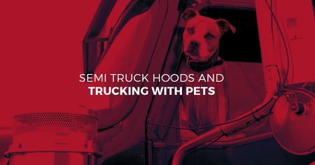 Semi Truck Hoods and Trucking with Pets