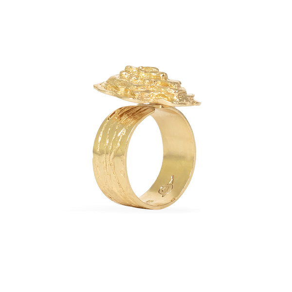 Gold Abalone Ring