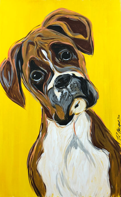 Curious Boxer Original Painting