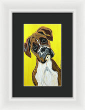Load image into Gallery viewer, Curious Boxer - Framed Print