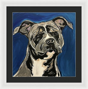 Rotty - Framed Print