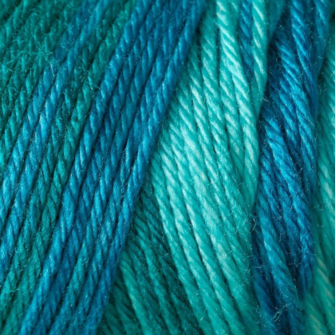 Image of Caron Bulk Buy Simply Soft Ombres Yarn (3-Pack) Teal Zeal 294008-8701