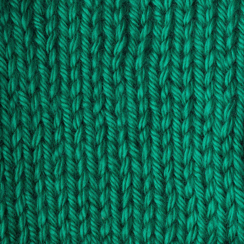 Image of Caron Simply Soft Solids Yarn