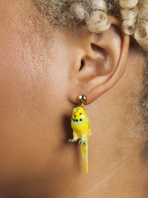 Nach Yellow Parakeet Earrings